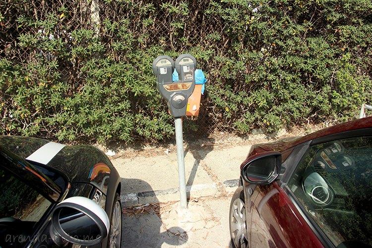 Один из видов паркоматов на Кипре