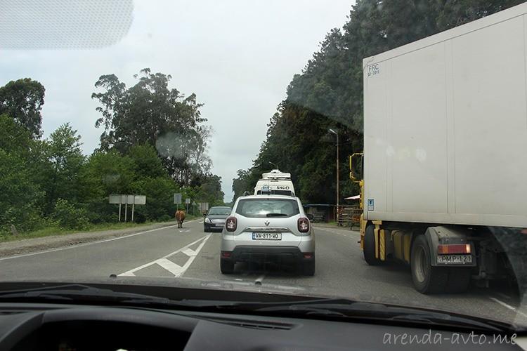 Прокат машины в Батуми